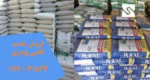 فروش چسب کاشی پودری